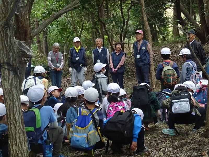 岸和田市立東光小学校4年生遠足サポート・・・うみべの森_c0108460_17485012.jpg