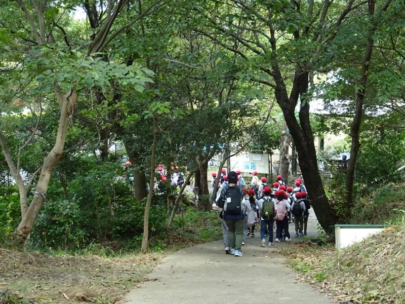 泉南市立鳴滝小学校2年生遠足サポート・・・うみべの森_c0108460_18054230.jpg