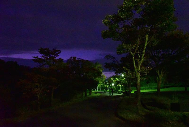 早朝散歩 秋空―その2_e0164563_13315984.jpg