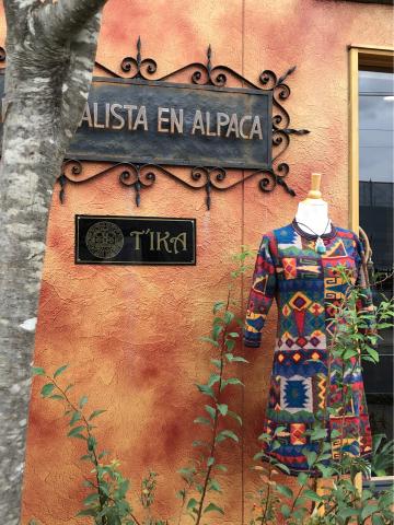 インカ柄アルパカニットのワンピース新作・アルパカざぶとん・笠間の菊まつり_d0187468_12385112.jpg