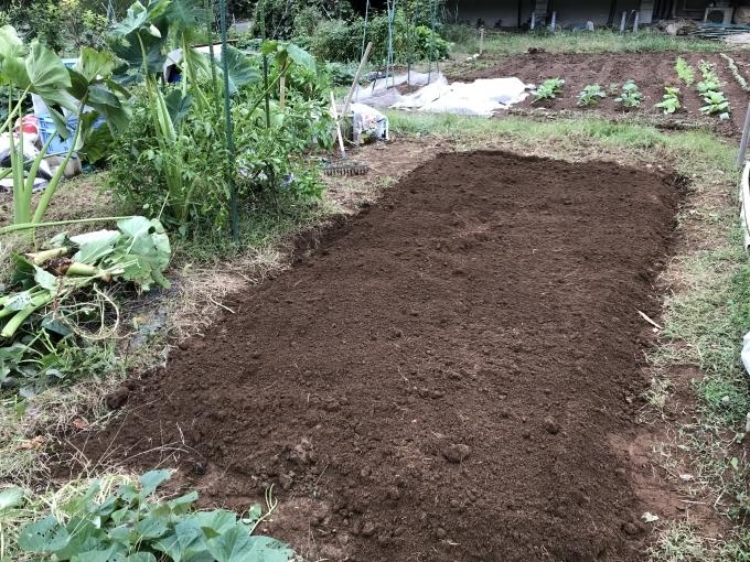畑仕事も忙しくなる - ベランダ野菜の記録