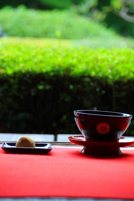 京都 雲龍院 ①_f0374092_17332355.jpg