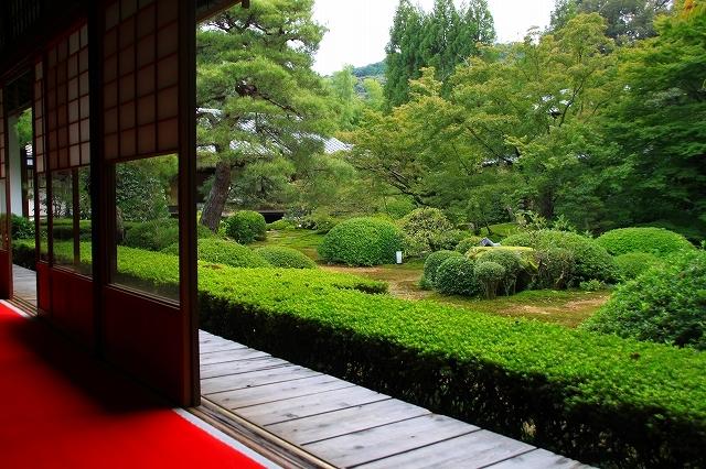 京都 雲龍院 ①_f0374092_17404038.jpg