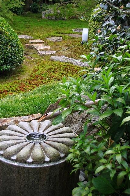 京都 雲龍院 ①_f0374092_17425387.jpg
