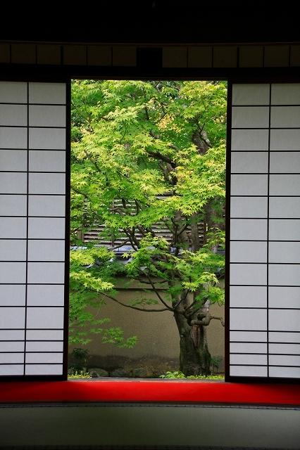京都 雲龍院 ②_f0374092_21531207.jpg