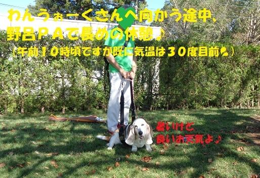 f0121712_14043743.jpg