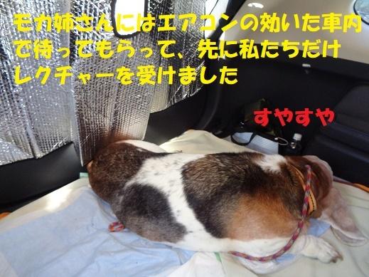 f0121712_20492014.jpg