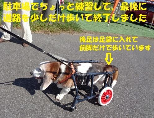 f0121712_21401427.jpg
