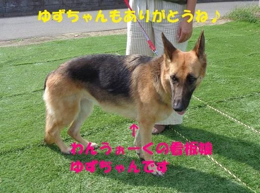 f0121712_22221007.jpg