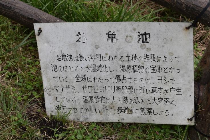 第30回 日本緑内障学会 その13(1176)  モーニングセミナー _f0088231_08151569.jpg