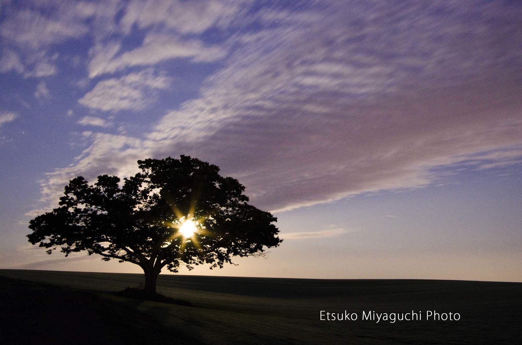 月と雲の競演_f0152939_03341199.jpg