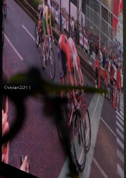 2019ジャパンカップ クリテリウム in 宇都宮_e0227942_22482804.jpg