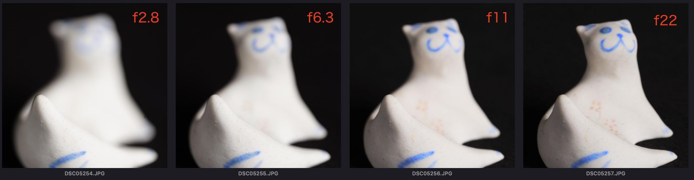 ちっさい標本の撮影・被写界深度合成_e0290546_02081744.jpg