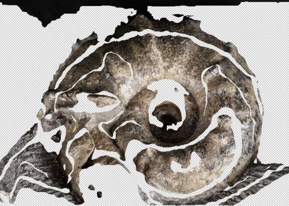 ちっさい標本の撮影・被写界深度合成_e0290546_02215839.jpg