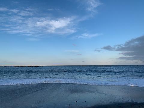 ひたち海浜公園へ_e0230154_08584319.jpg