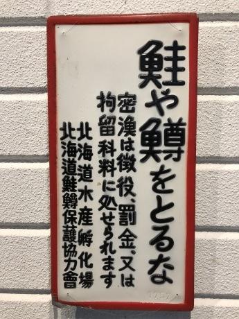 紅葉の支笏湖ー千歳ポタリング_b0209862_17504016.jpg