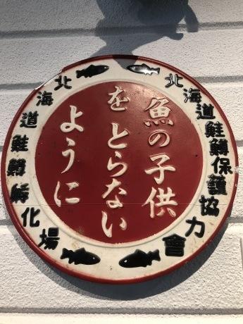 紅葉の支笏湖ー千歳ポタリング_b0209862_17510011.jpg