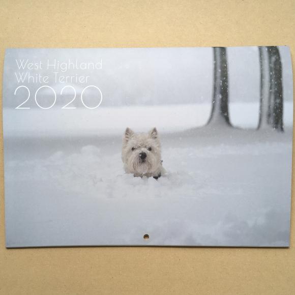 刷り上がってきたカレンダー_b0107163_13480775.jpg
