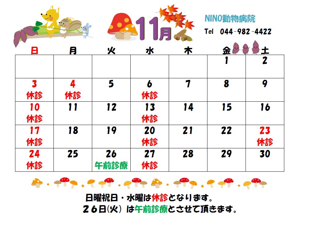 11月の診療日のお知らせ☆_e0288670_14182774.png