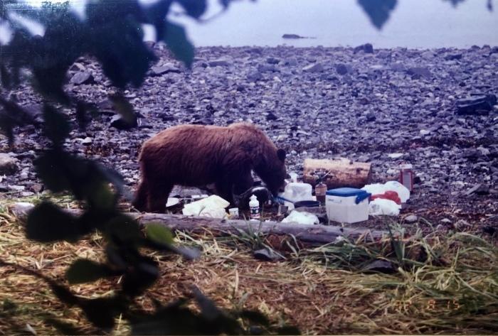 プロフィール⑧「カナダ・ログハウス修行時代」その2:〜アラスカ。自然界にお邪魔しまんねやわ〜_a0142373_12202629.jpeg