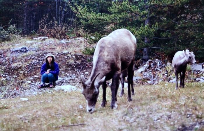 プロフィール⑧「カナダ・ログハウス修行時代」その2:〜アラスカ。自然界にお邪魔しまんねやわ〜_a0142373_12260918.jpeg