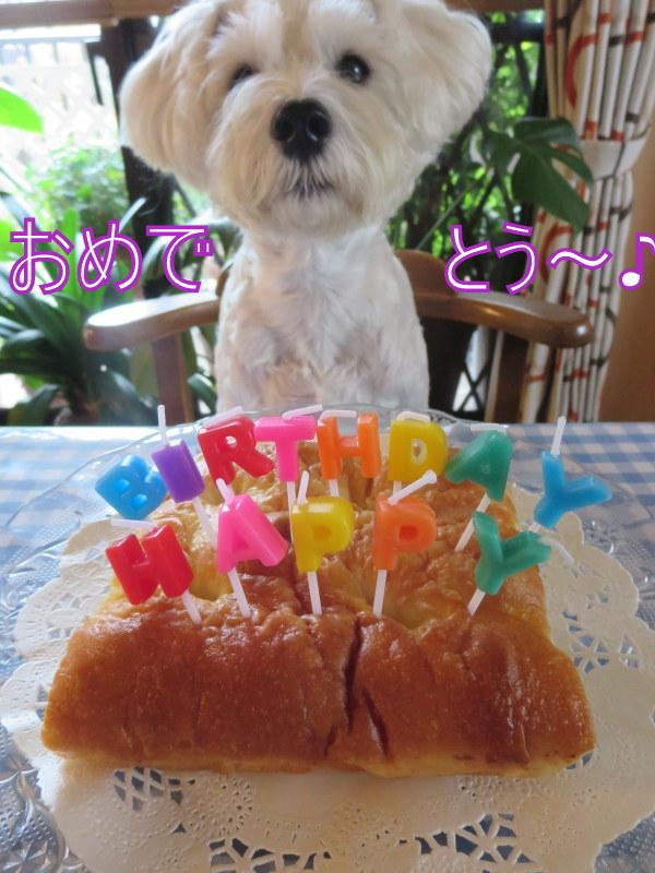 誕生日おめでとう♪_d0264176_18282814.jpg