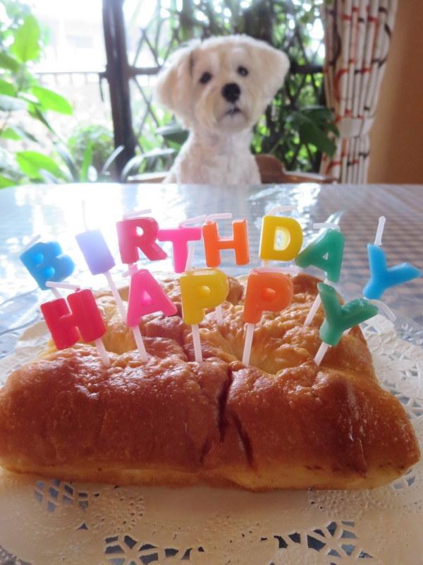 誕生日おめでとう♪_d0264176_18290649.jpg