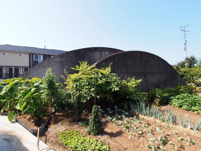 旧松山航空基地掩体壕_f0116479_21162109.jpg