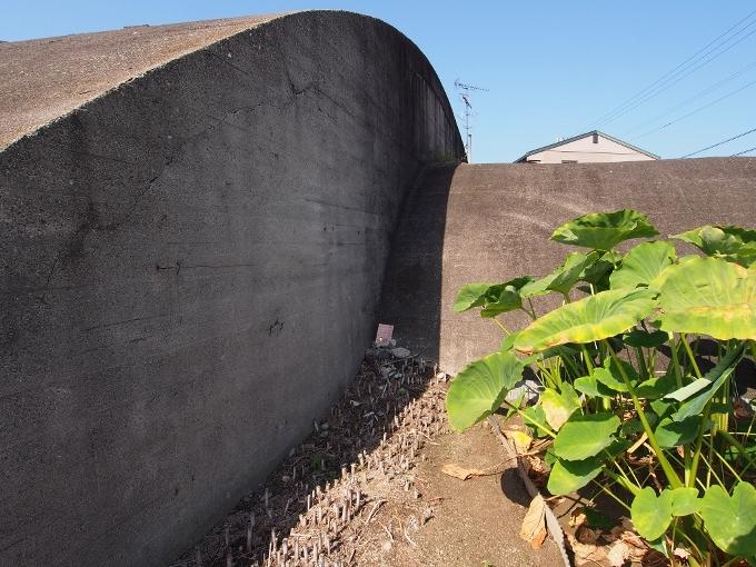 旧松山航空基地掩体壕_f0116479_21165013.jpg