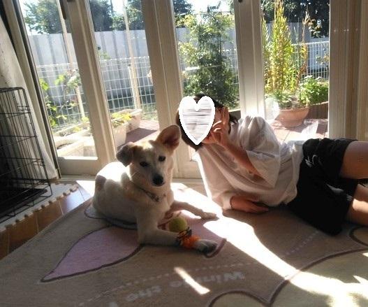 はつか、家族ができました! - Together with the dog  ~ ファンパウズ