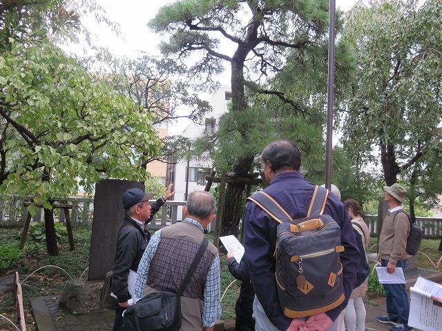 戸山公園(新江戸百景めぐり⑦)付記-穴八幡宮と高田馬場_c0187004_18221736.jpg