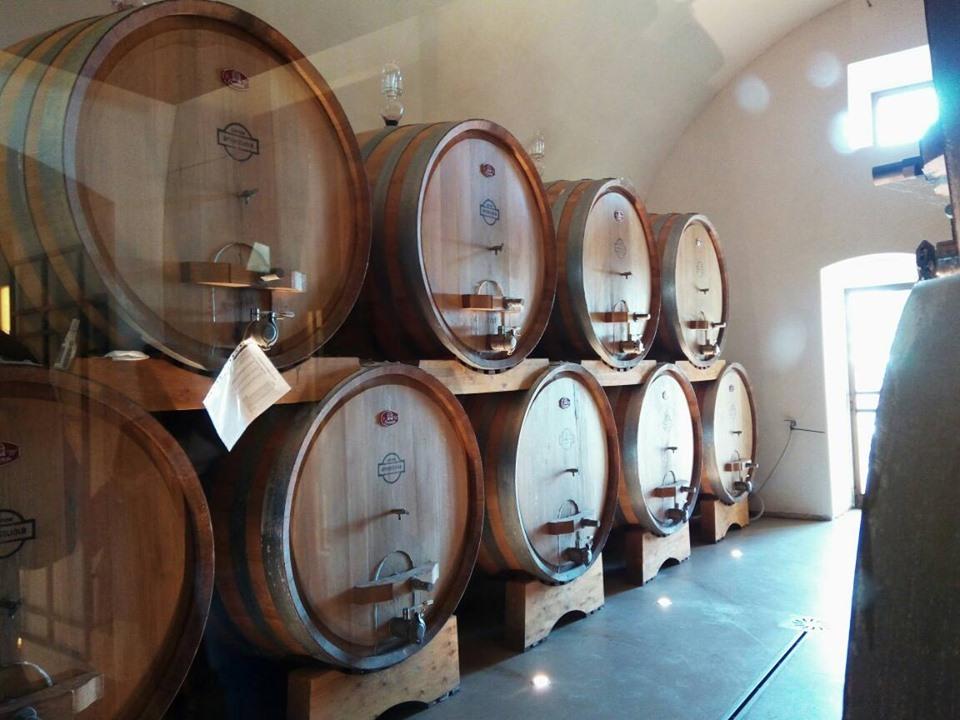 ワインテイスティングで新しいワインを知る!_b0305039_16425370.jpg
