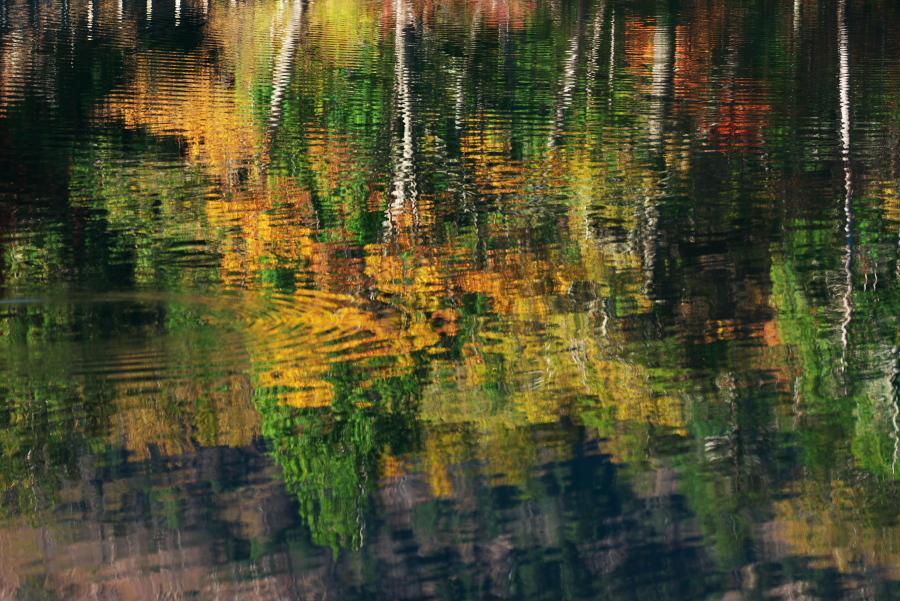 奥日光 湯ノ湖の紅葉の始まり1_a0263109_19262497.jpg