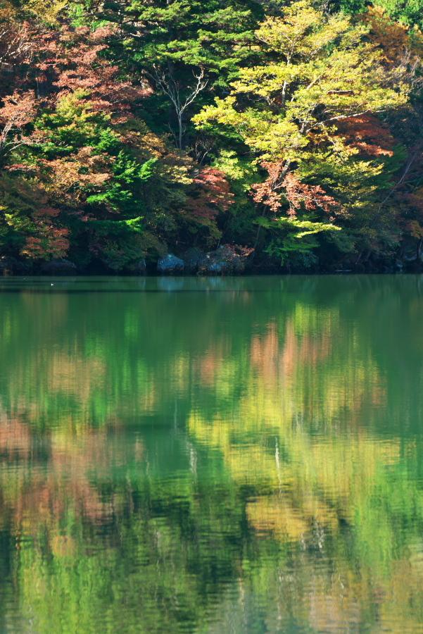 奥日光 湯ノ湖の紅葉の始まり1_a0263109_19271413.jpg