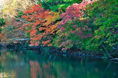奥日光 湯ノ湖の紅葉の始まり1_a0263109_19271599.jpg