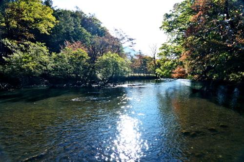 奥日光 湯ノ湖の紅葉の始まり1_a0263109_19271667.jpg