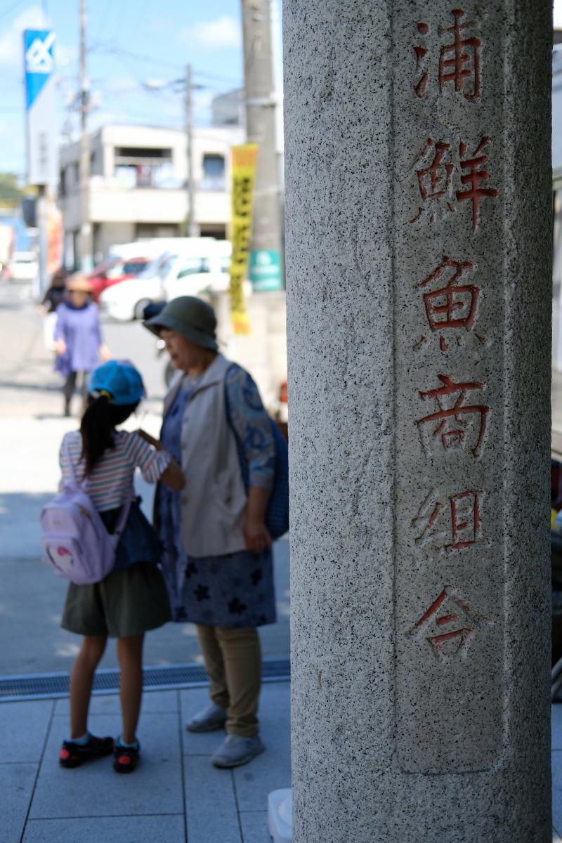 勝浦  カメラおやじの港町行脚_b0061717_00072037.jpg