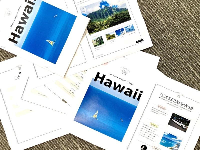 2度目のハワイ旅行記2019(準備編3)_e0006219_17395463.jpg