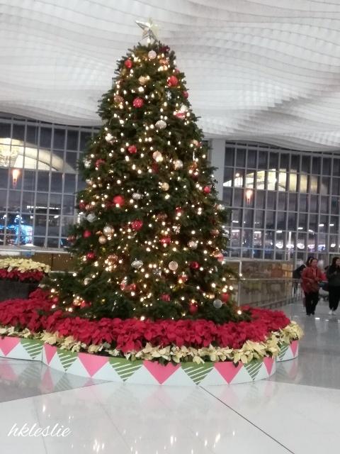香港國際機場二號客運大樓到着_b0248150_13351378.jpg