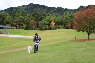 公園ハシゴ散歩_e0293553_21140380.jpg