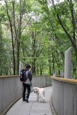 公園ハシゴ散歩_e0293553_21143276.jpg