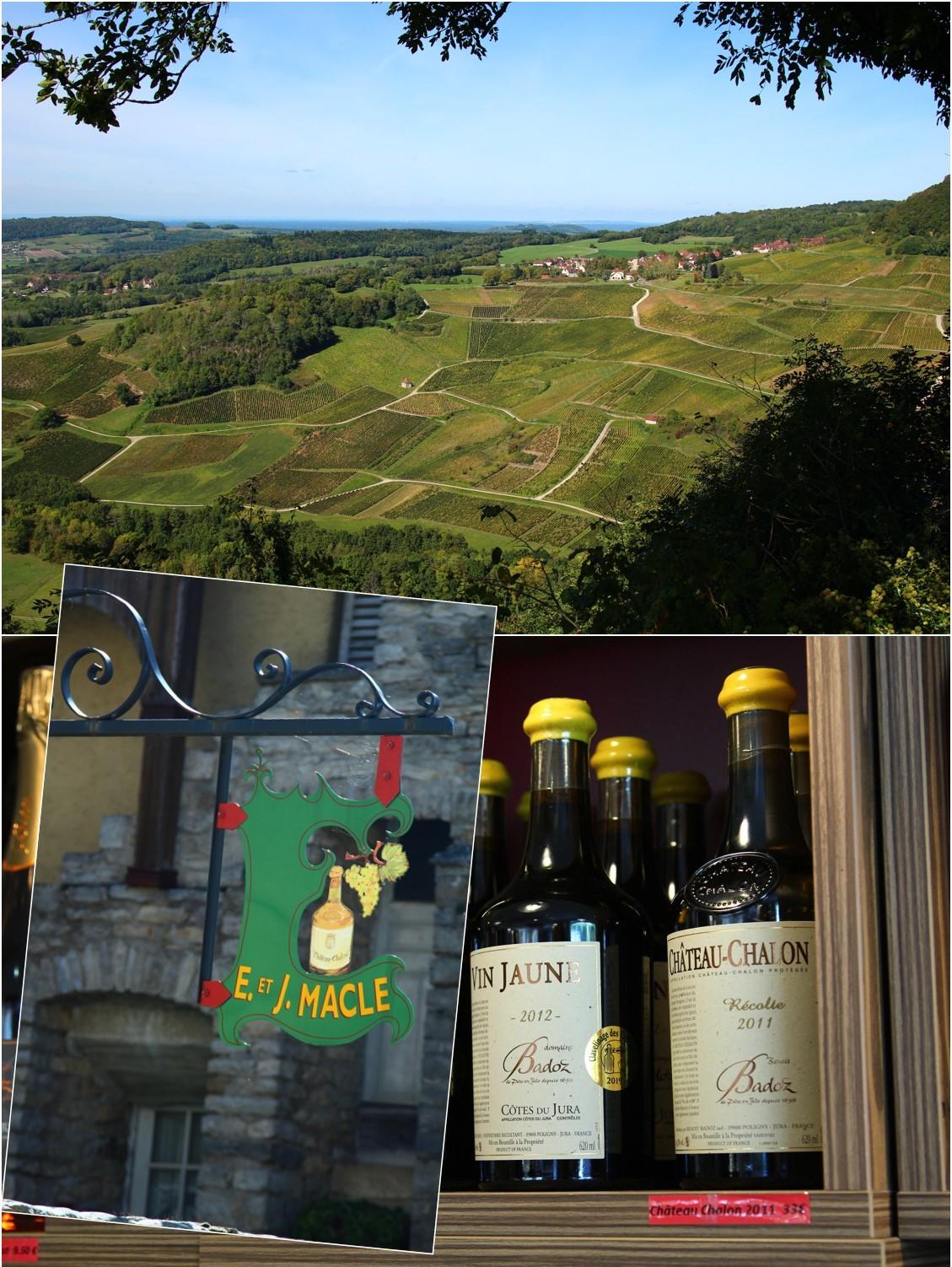 ブルゴーニュ ワイン旅_a0107981_23314518.jpg