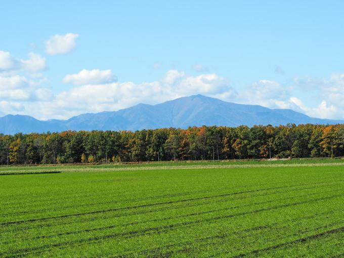 秋晴れの農村風景と紅色がきれいな「美術村庭園」の紅葉。_f0276498_22271201.jpg