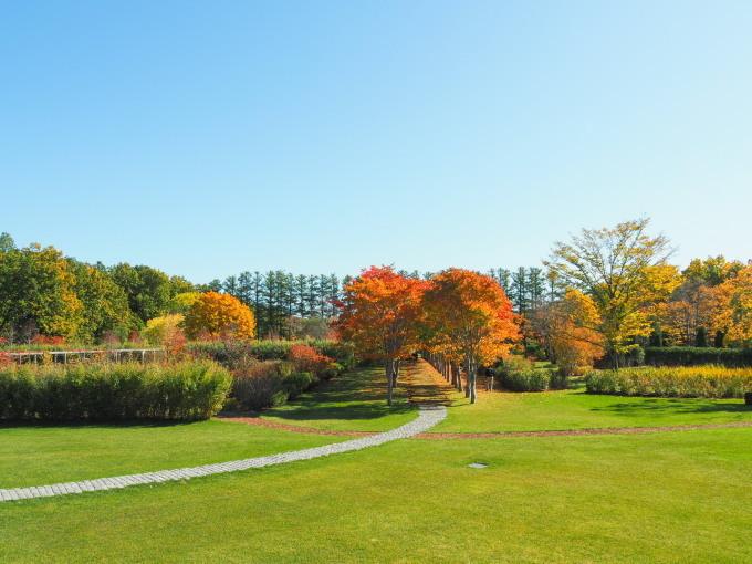 秋晴れの農村風景と紅色がきれいな「美術村庭園」の紅葉。_f0276498_22310591.jpg