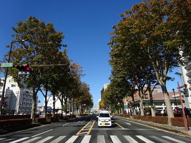 秋の盛岡の様子_f0105112_05421916.jpg
