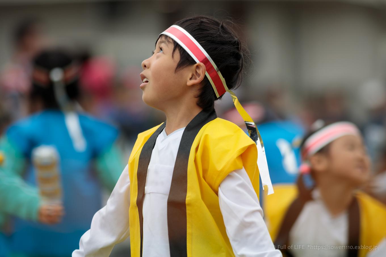 ちびっこ兄弟の幼稚園運動会_c0369219_13471260.jpg