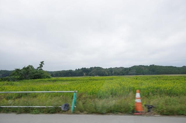 福島出張その1_d0052327_12405152.jpg