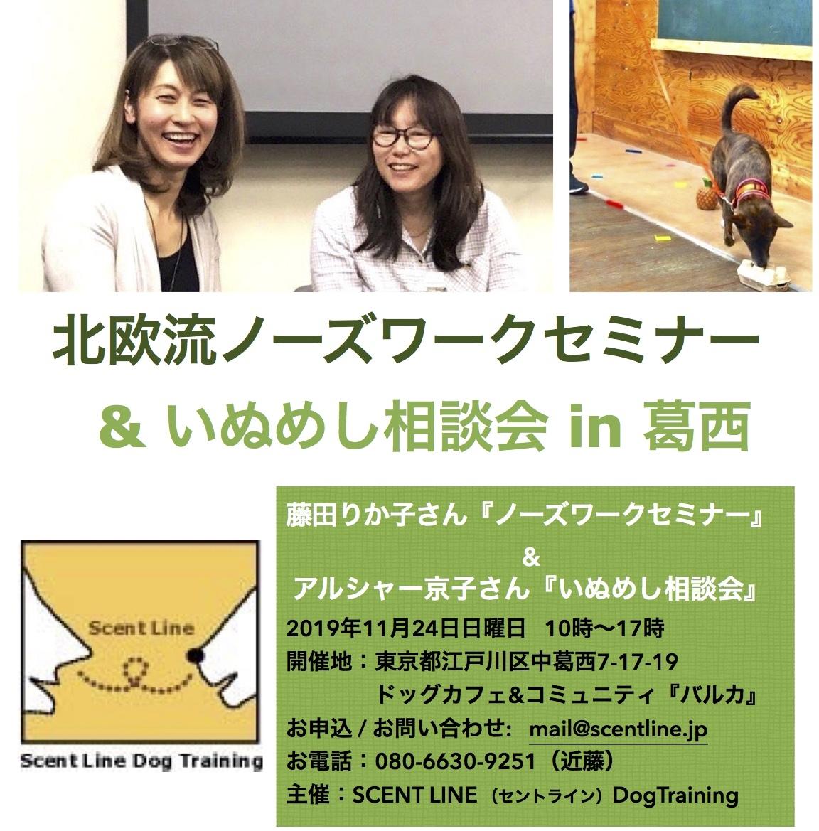 11/24(日)ノーズワークセミナー&いぬめし相談会同時開催!_c0099133_12023702.jpg