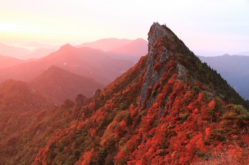 11/7 石鎚山で、森林保全活動・NPO法人石鎚森の学校とコラボ_f0236659_08004106.jpg