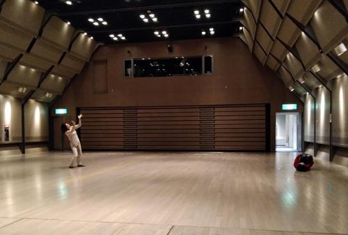 ダンスギャザリング10.20 報告_e0124863_18371315.jpg